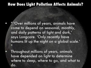 How does light pollution affect humans and animals
