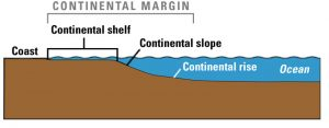 The formation of continental shelf