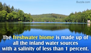 Facts about freshwater