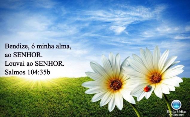 escola_biblica_online_wallpaper_104_35