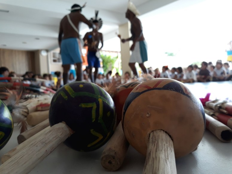 indios na colmeia (21)
