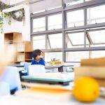 Autismo e educação: autistas devem estudar em escola regular?