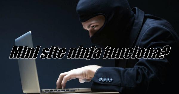 Mini site ninja funciona?