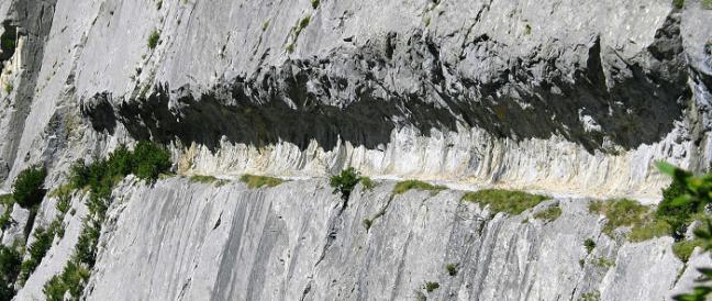 Chemin de la Mâture (1200 m) pour exploiter le bois de la forêt du Pacq