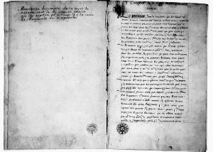 Manuscript des comptes de la royne de Navarre soeur du roy Francois premier que lon appeloit en ce temps la a la cour La Marguerite des marguerites (p. de gauche)