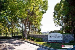 Escondido Chamber Networking Mixer at The Vineyards