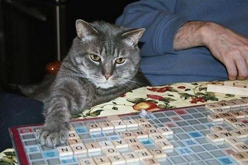 Who can resist Scrabble-thon?