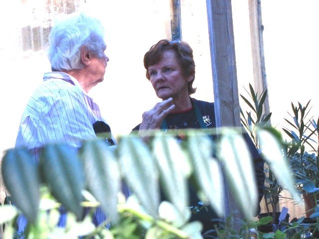 Dos Valles Garden Club members Lee Bathgate and Nancy Maynard get ready for March 12 plant show.