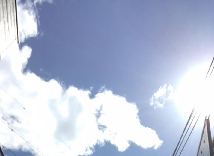 埼玉の夏の空