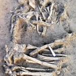 Fotos contadas (III): Hasta los huesos