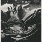 Fototuit XI: Evelyn McHale, el cadáver más hermoso