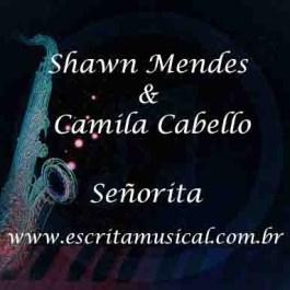 Shawn Mendes & Camila Cabello – Señorita