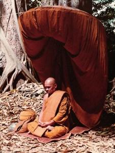 Ajahn_Chah_Forest_Monk