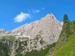 Fungo de Ombreta Orientale dalla Val De Ombreta