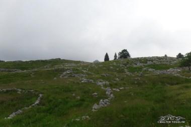 Monte Ciastelat che fa capolino tra gli ex pascoli della vecchia casera