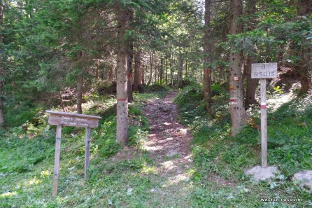 Bivio a destra, sentiero delle cime/vette