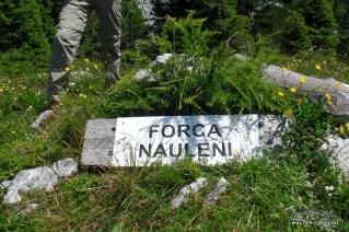 Forcella Nauleni