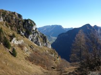 in forcella