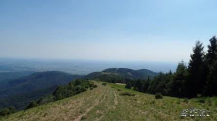 Vista verso Udine