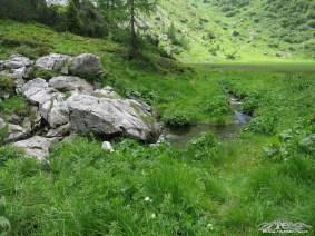 piccolo rio al bivio