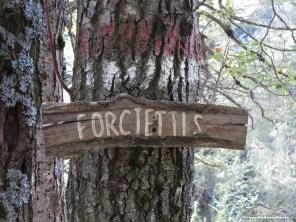 località Forcjettis