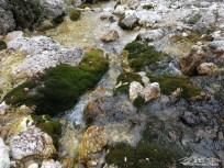 alle sorgenti del rio Alba