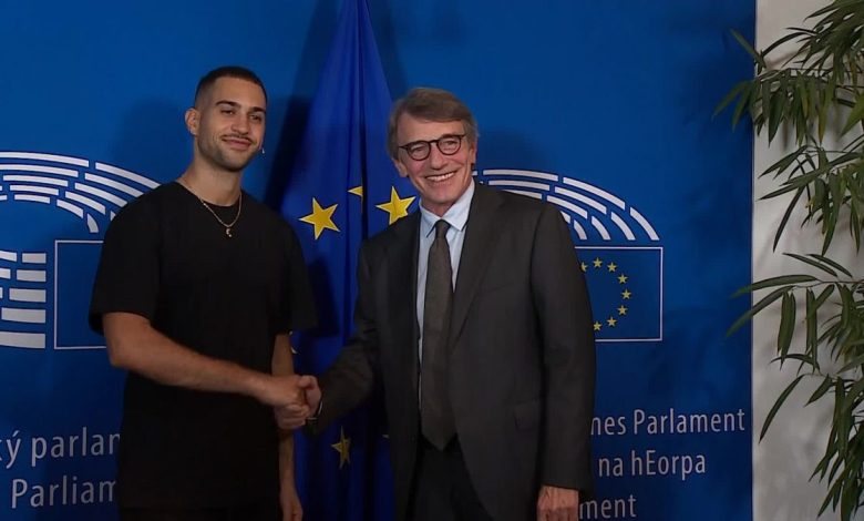 Mahmood European Parliament