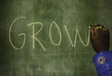 Tusse Grow