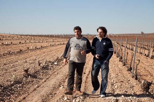 Vinos Patio Cuenca