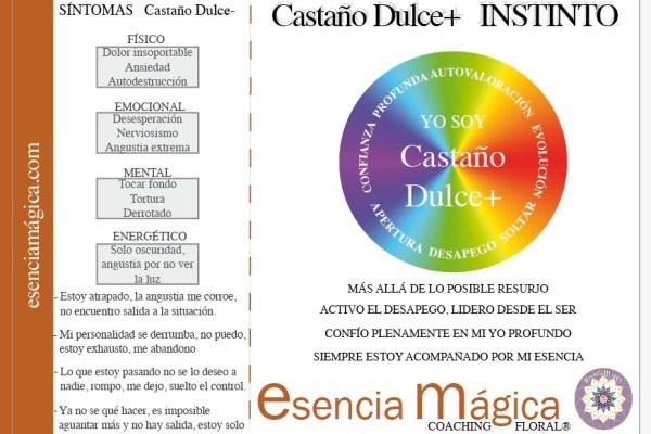 LUZ PURA FLORAL CASTAÑO DULCE