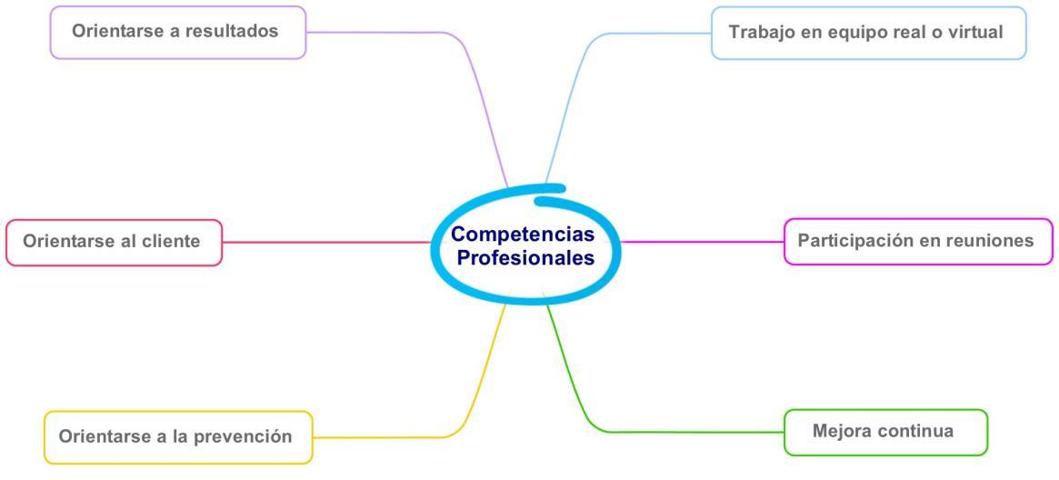 gráfico competencias profesionales