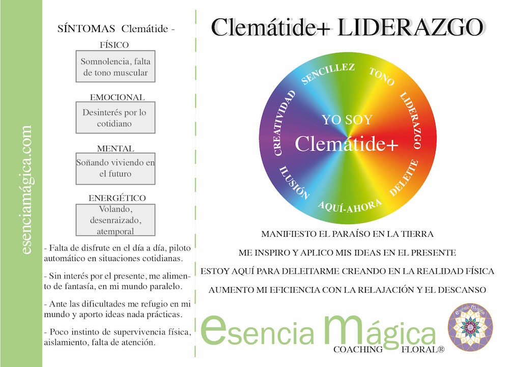 TARJETA COACHING FLORAL CLEMATIDE
