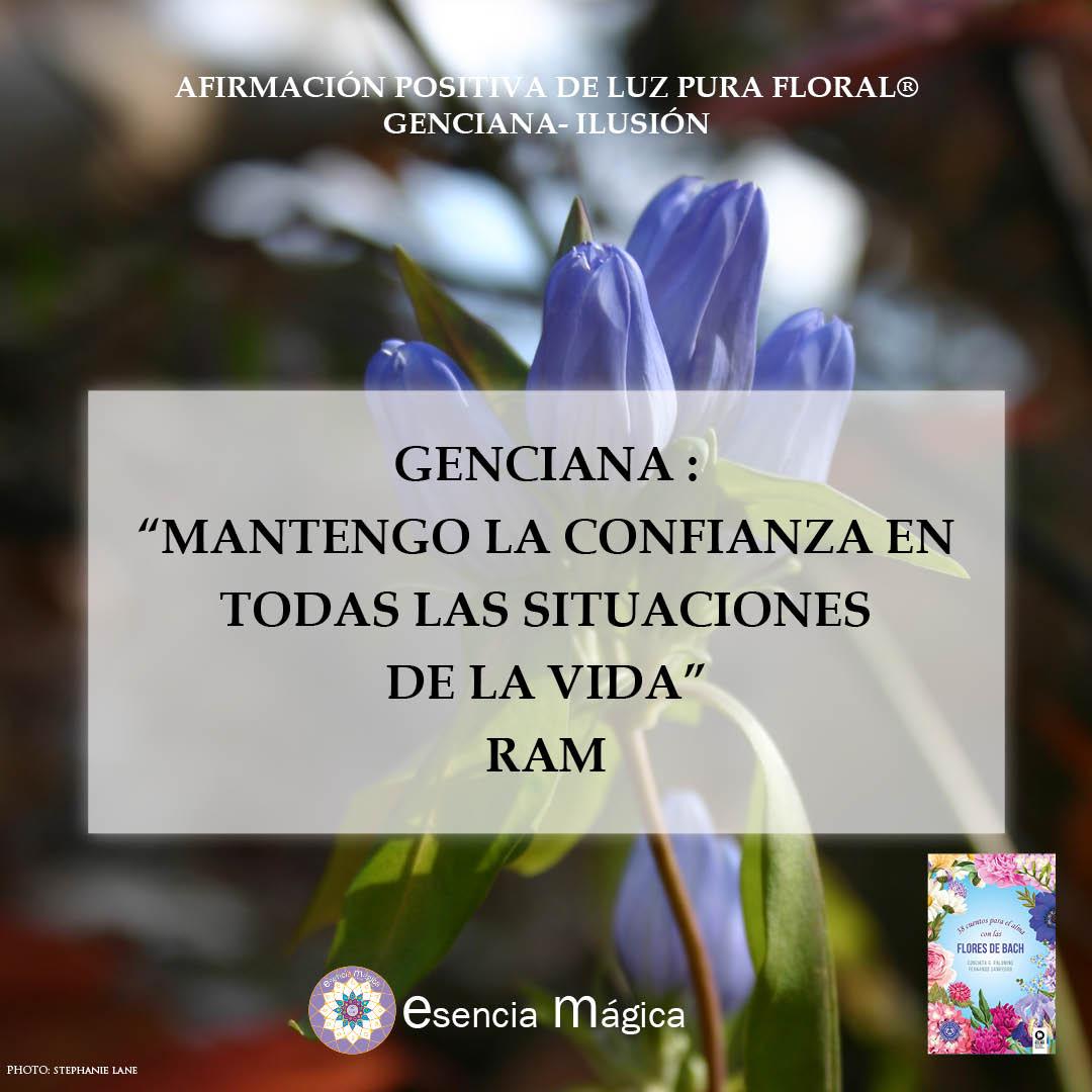 Afirmación positiva de Luz Pura Floral. Genciana-Ilusión