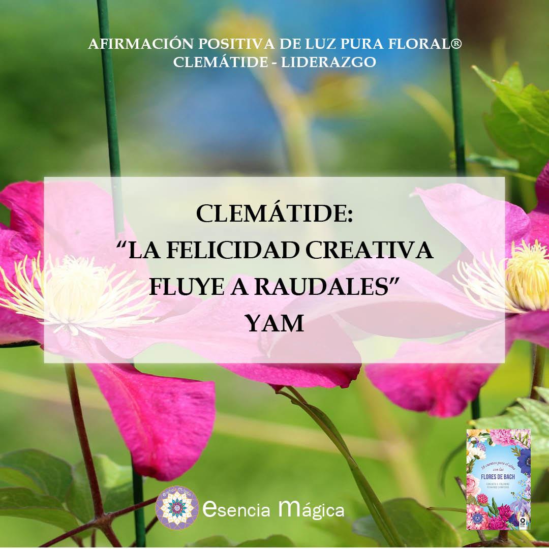 Afirmación positiva de Luz Pura Floral. Clemátide-Liderazgo