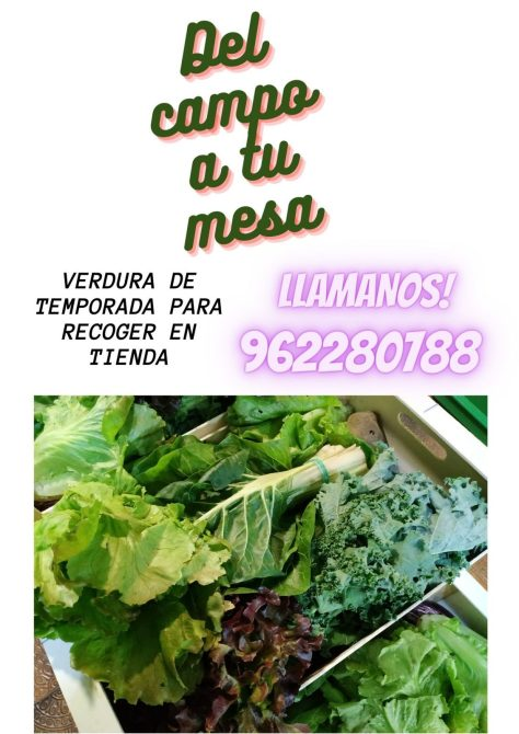 verduras orgánicas Bio