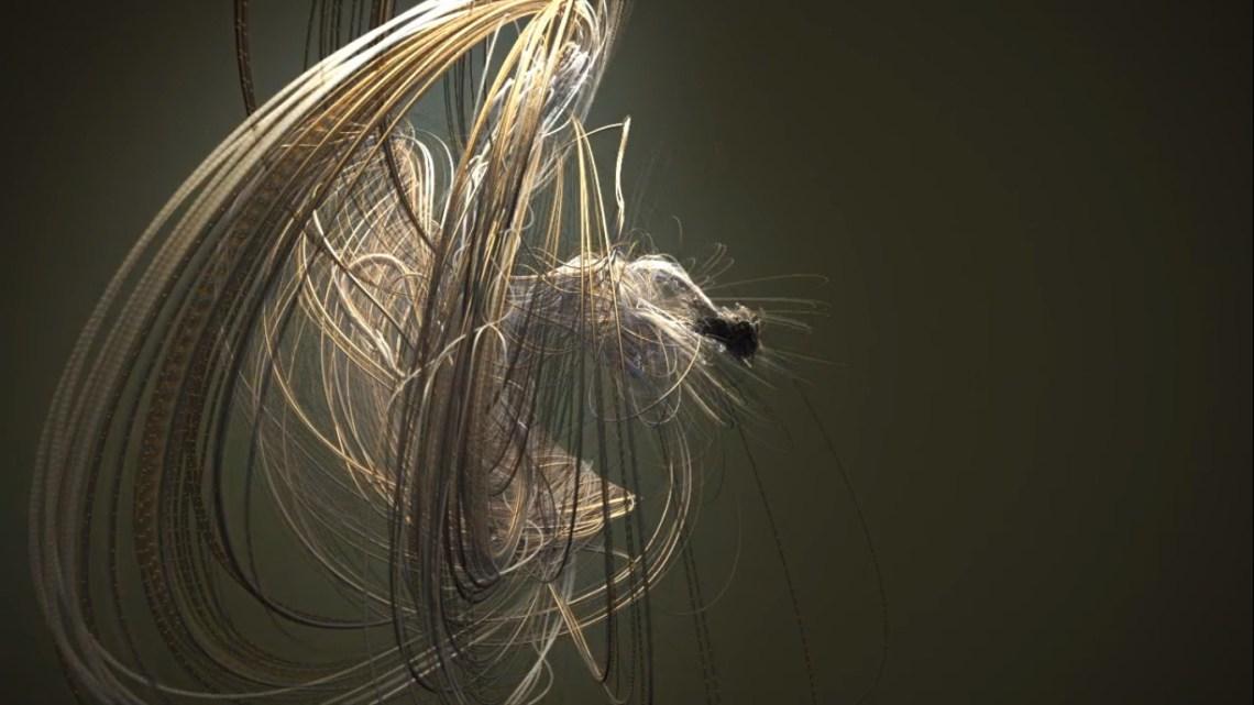 Rastreando os movimentos frenéticos de um maestro da Sinfônica de Londres.