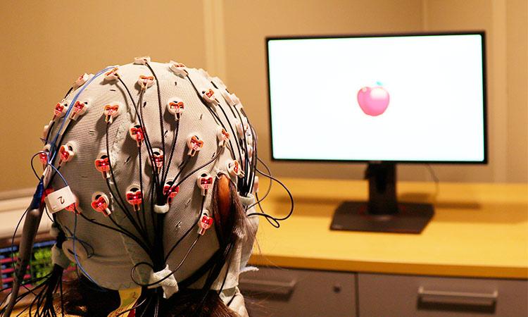 Polícia de Dubai decifra caso de assassinato usando tecnologia de 'impressão digital cerebral'.