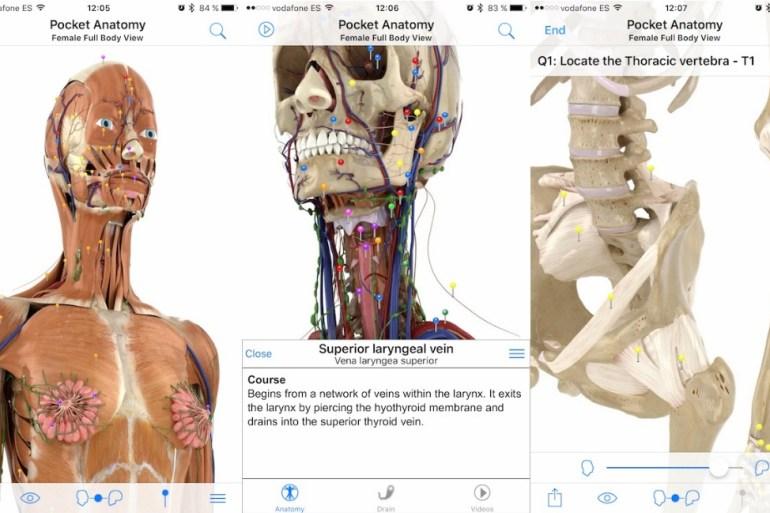 Pocket Anatomy iPhone