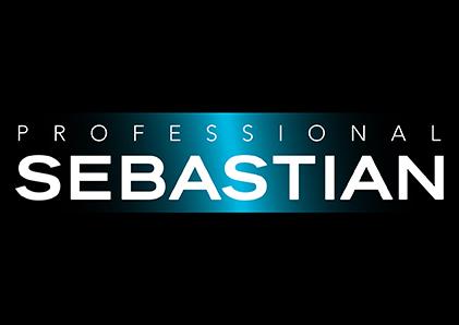 Sebastian-Professional-Logo-Web