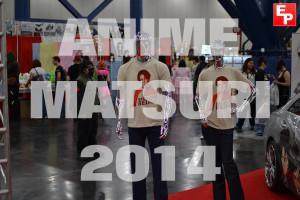 Anime Matsuri 2014