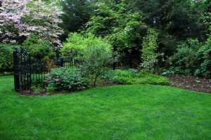 Lush Lawn in Lancaster, PA Eshelman Mill Gardens and Landscapes