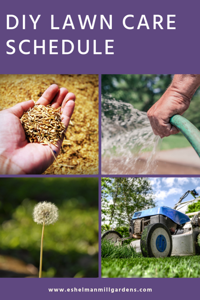 DIY Lawn Care Schedule for Lancaster