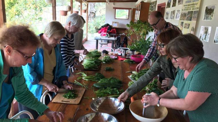 The Wild Edible Plant Seminar and Cooking Lesson