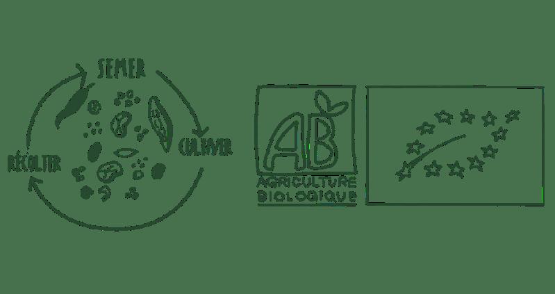 des graines bios et des semences paysannes reproductibles dans la première box jardinage pour balcon et sans jardin