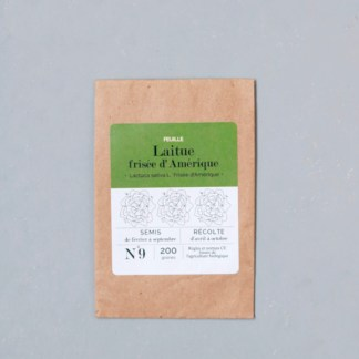 sachet de graines bio et reproductibles de laitue frisée d'Amérique, plantes facile à cultiver sur un balcon - échoppe végétale