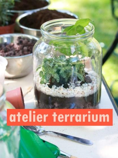 terrarium : bocal en verre transparente, posé sur une table en extérieur, le bocal contient des petites plantes, de la terre, de la pouzzolane et des graviers blancs
