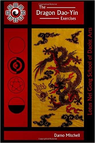 Damo Mitchell Dragon Dao Yin Qigong