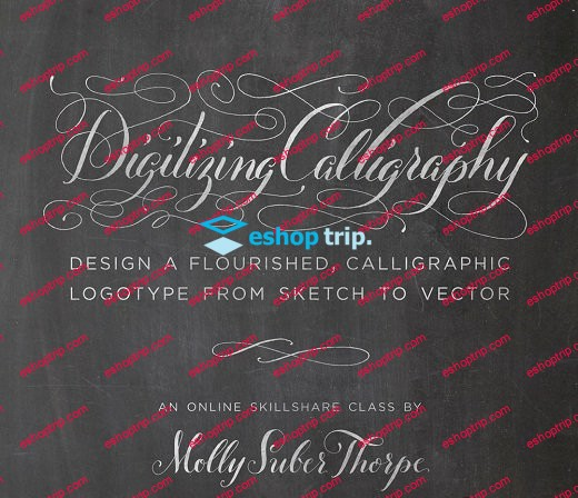 Digitizing Calligraphy From Sketch to Vector