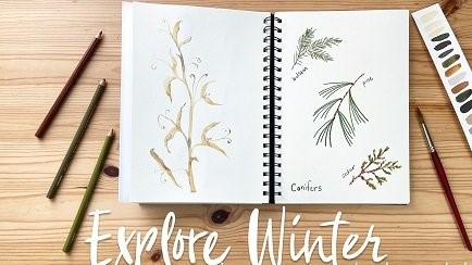 Explore Winter in Your Botanical Sketchbook