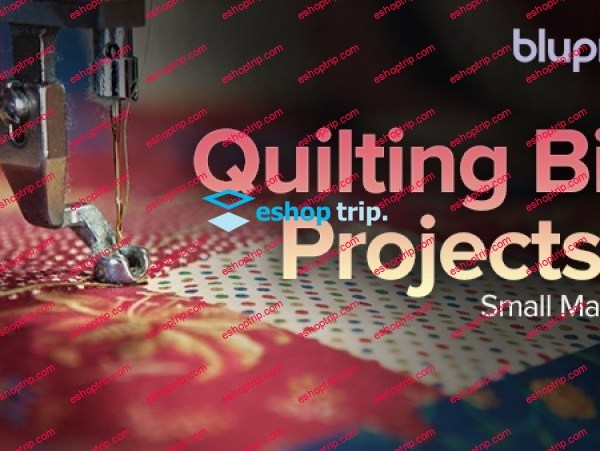TTC Craftsy Video Quilting Big Projects on a Small Machine
